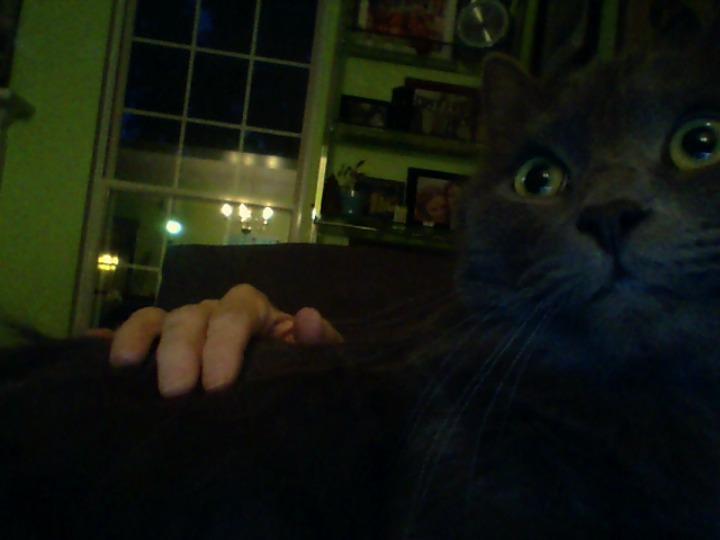 Baltazar on lap